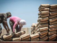 ترقبوا ارتفاع أسعار الإسمنت في سوريا